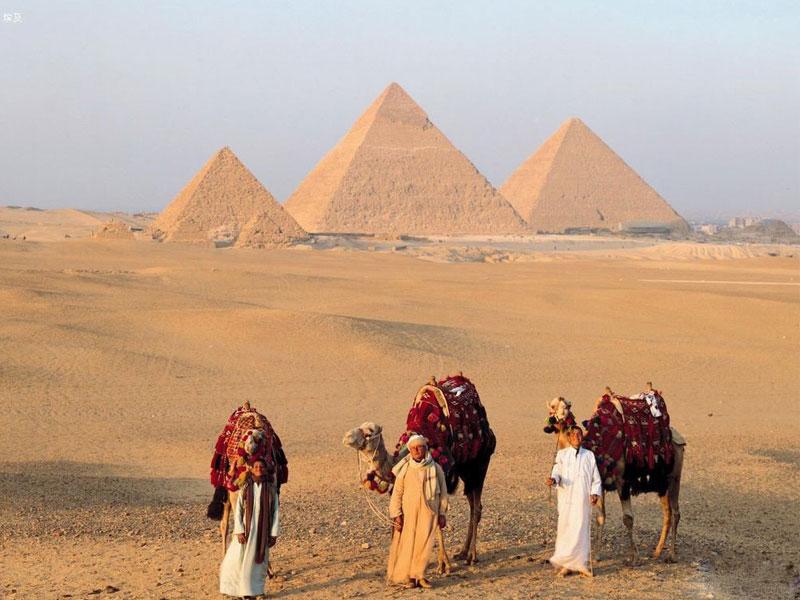 与埃及客户合作